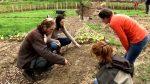 La Ferme De La Haute Desnié – Ecole De Permaculture
